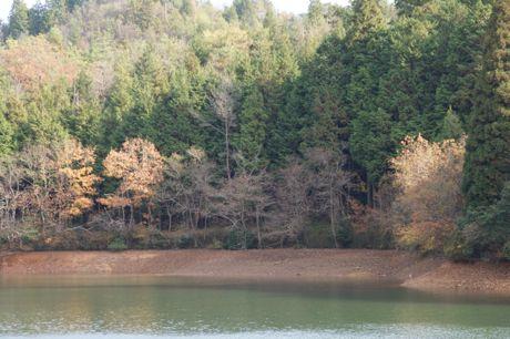 小枕の池−3.jpg