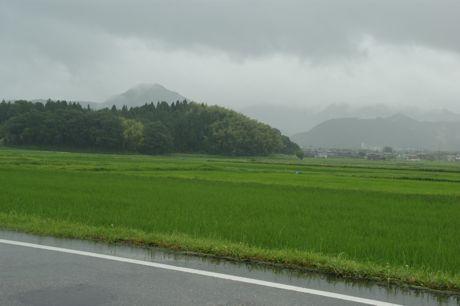 小雨の田園風景−1.jpg