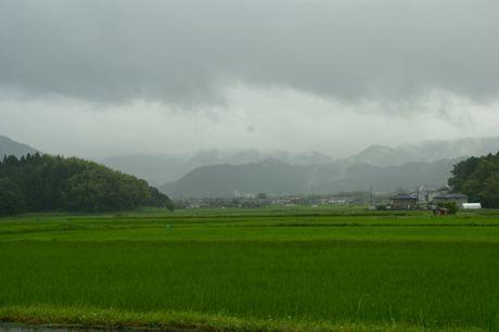 小雨の田園風景−3.jpg