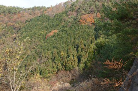 摂津、丹波境の山−6.jpg