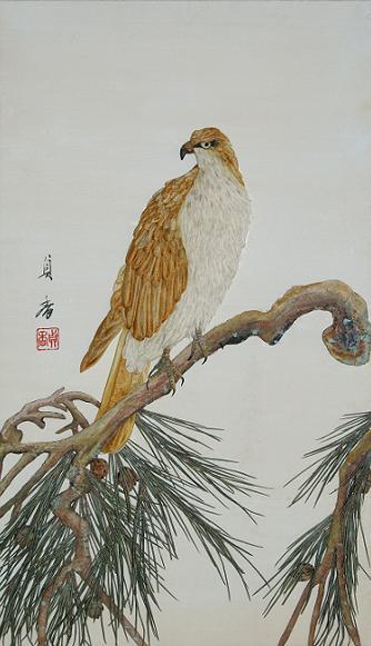 摘絵松に鷹8/4/26/-1.jpg