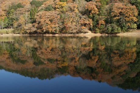 池端の風景ー☆.jpg