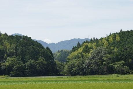 田畑の風景−2.jpg