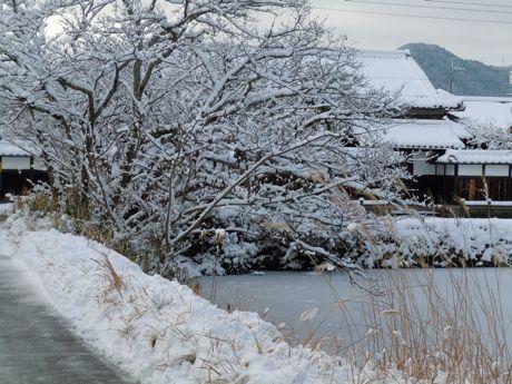 翌日の雪景色−2.jpg