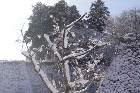 雪の城跡−2.jpg