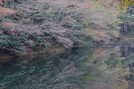 藤岡奥風景−4.jpg