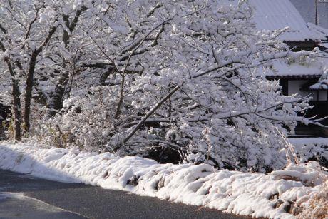 雪の城跡−6東馬出しの民家.jpg
